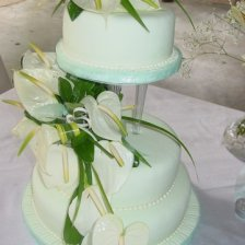 3 Anthurium with Mint Green Fodant